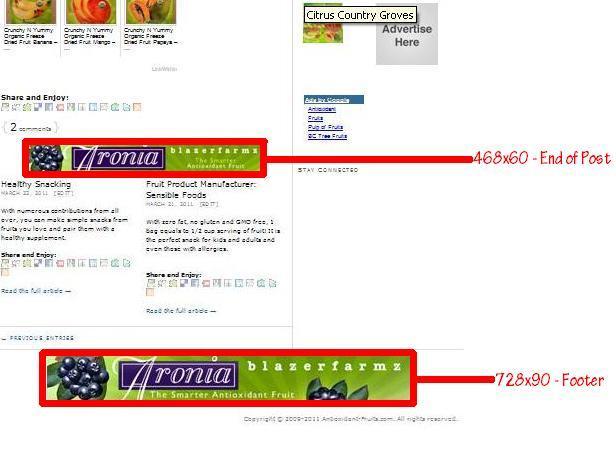 Campaign Grid for Antioxidant-fruits.com