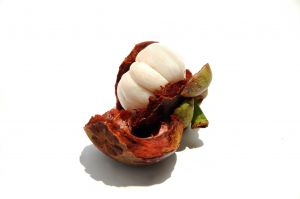 Mangosteen Fruit Benefits