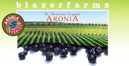 Interview with Blazerfarmz Fruit Farm