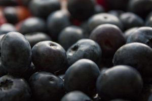 Fat Fighting Antioxidants