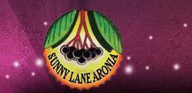 Sunny Lane Aronia