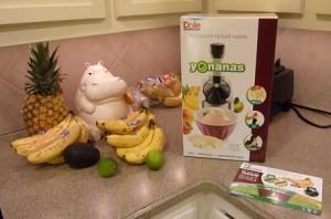 Yonanas Ice Cream Treat Maker Review