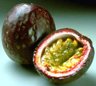 Passion Fruit – Granadilla, Purple Granadilla, Yellow Passion Fruit